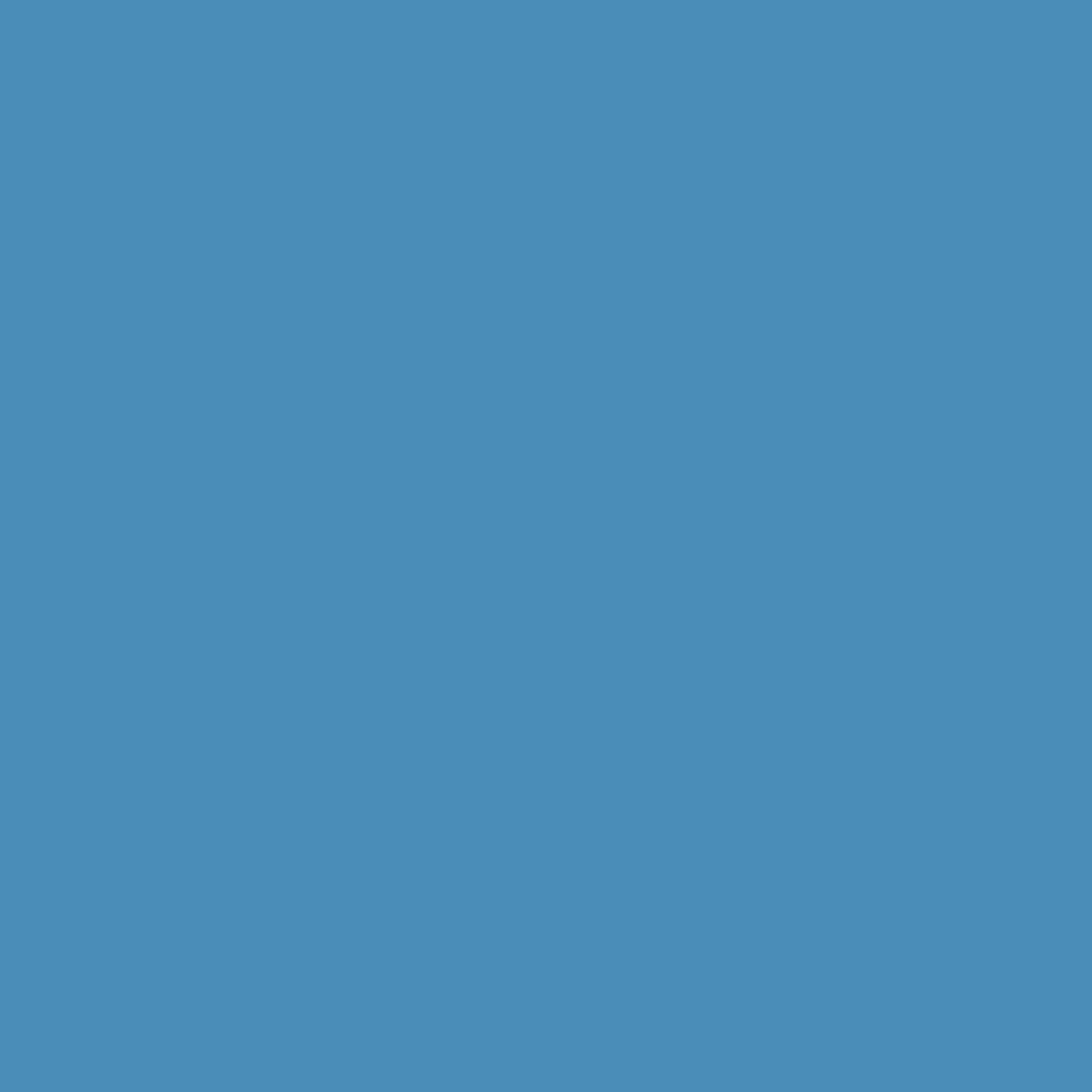 インジーニアス パウダーアイズ NEX-17 スカイブルー