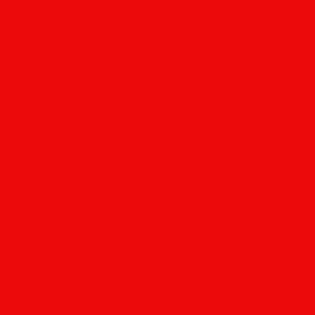 シアーリップカラー N101 red