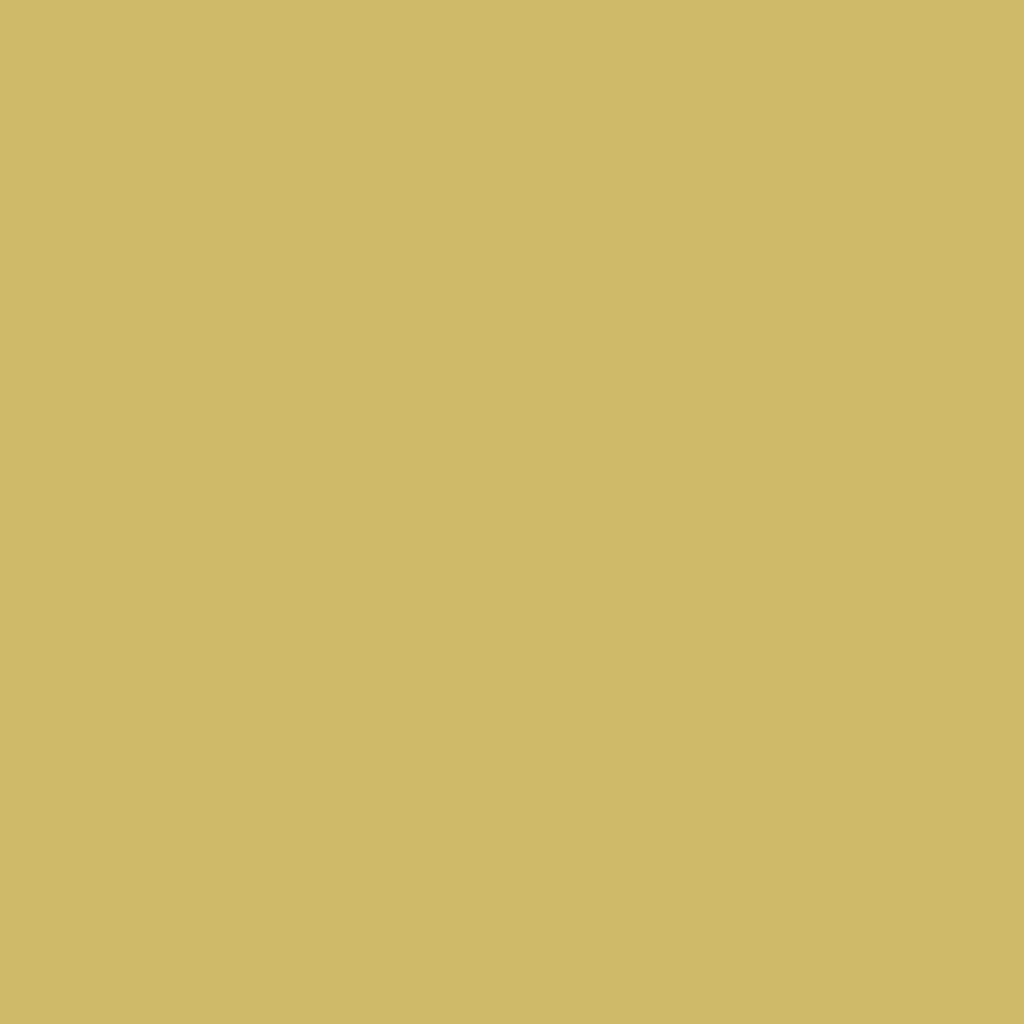 プレスド アイシャドー (レフィル)G gold