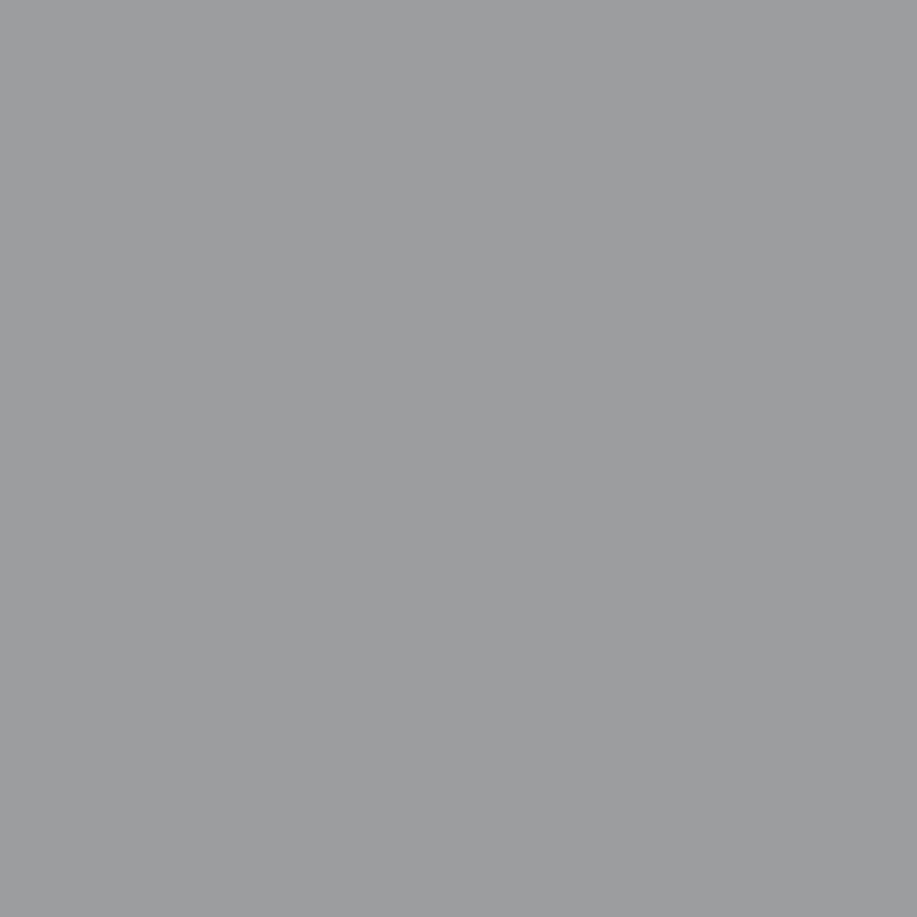プレスド アイシャドー (レフィル)G silver