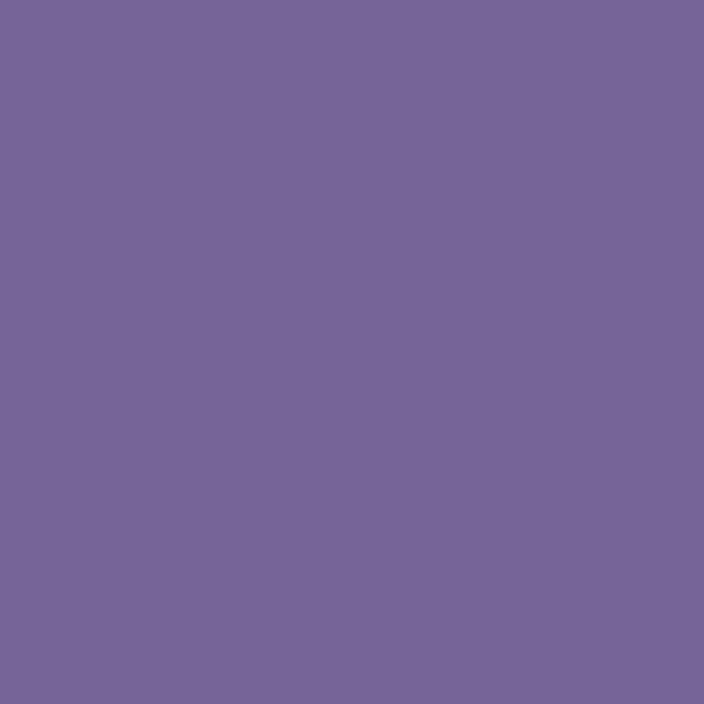 プレスド アイシャドー (レフィル)S パープル 750