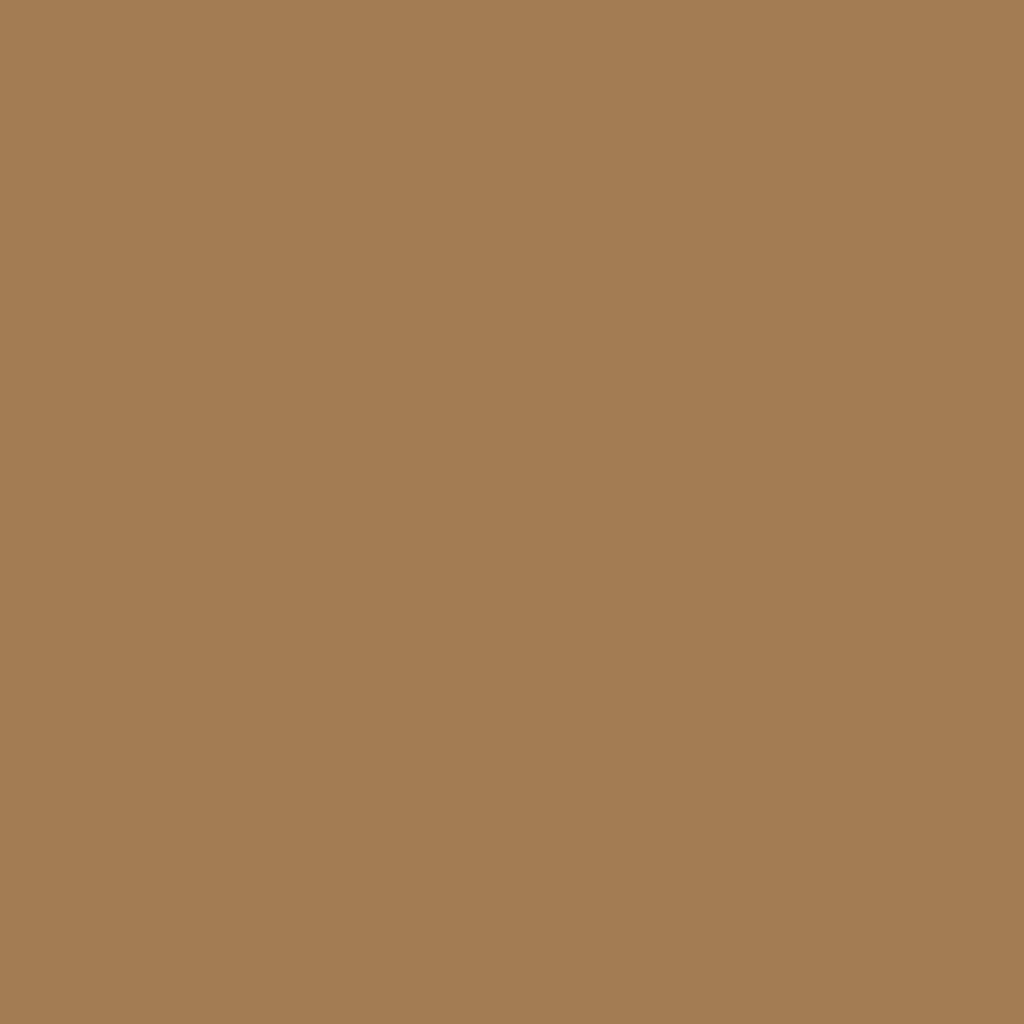 プレスド アイシャドー (レフィル)G bronze