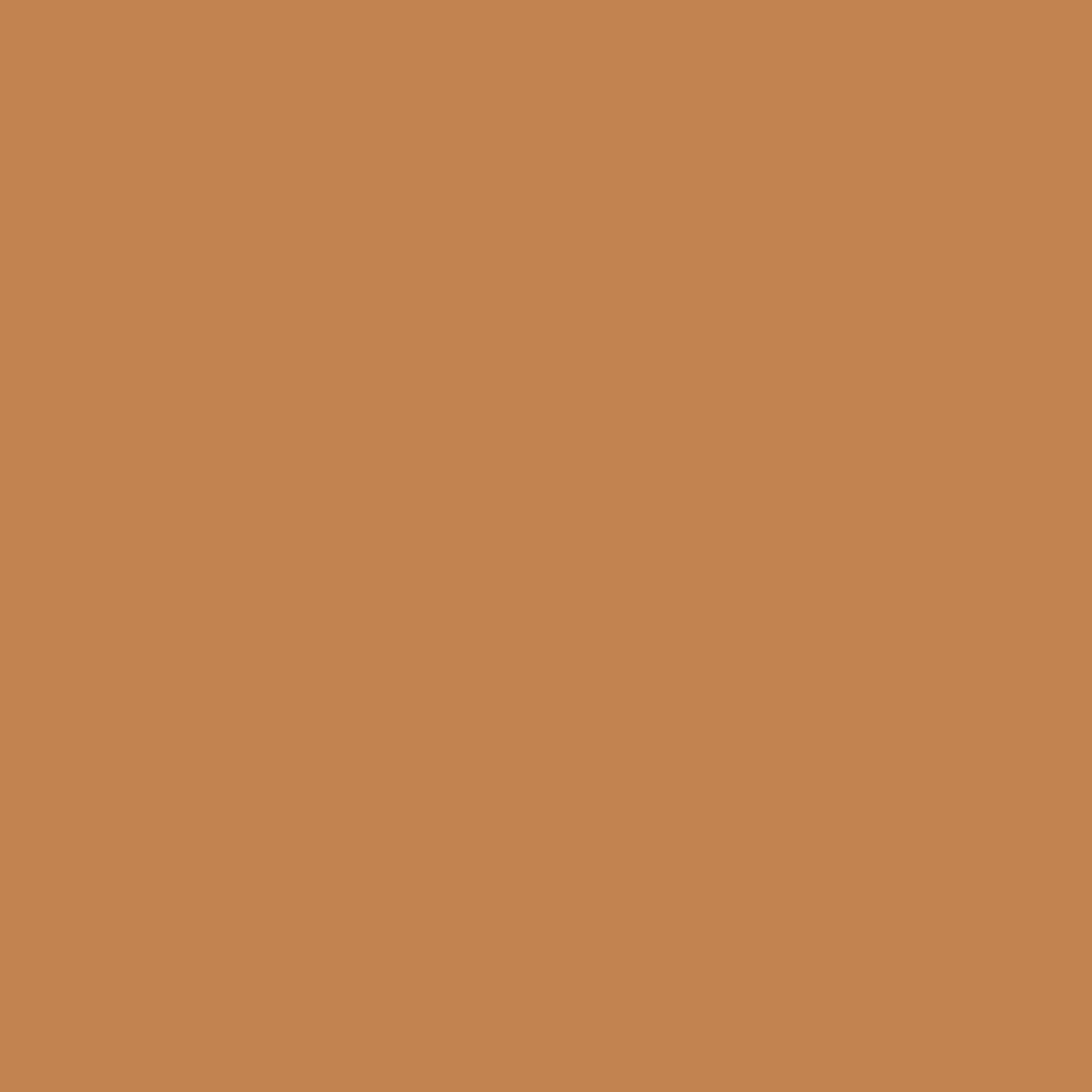 シークレットスキンメイカーゼロ(パクト)05 小麦色の肌
