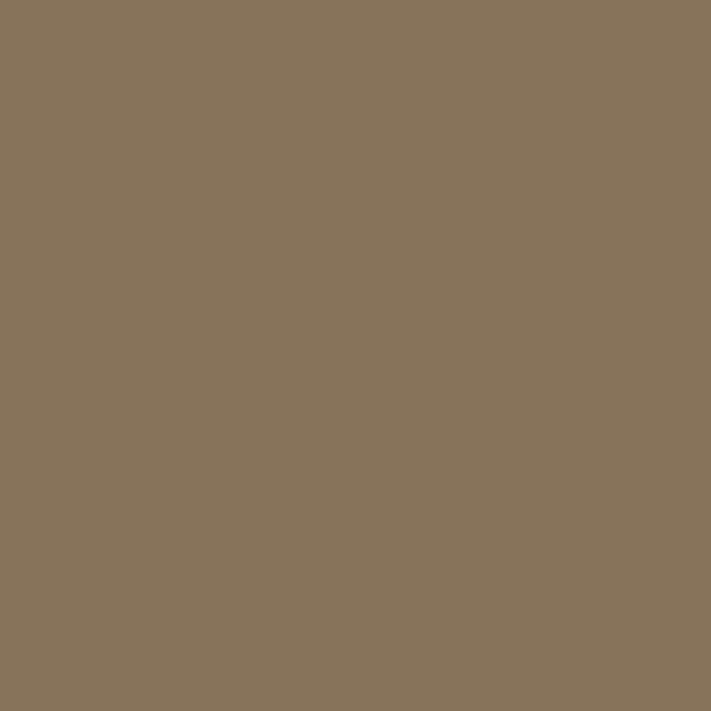 プレスド アイシャドー (レフィル)M ミディアム ブラウン 874