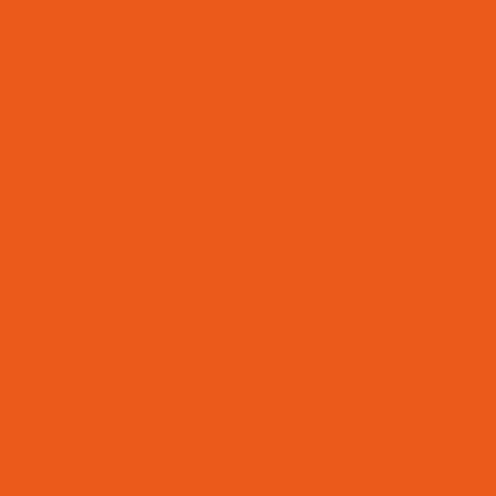 カラーリッシュ ルルージュC411 ワイルドタンゴ(生産終了)