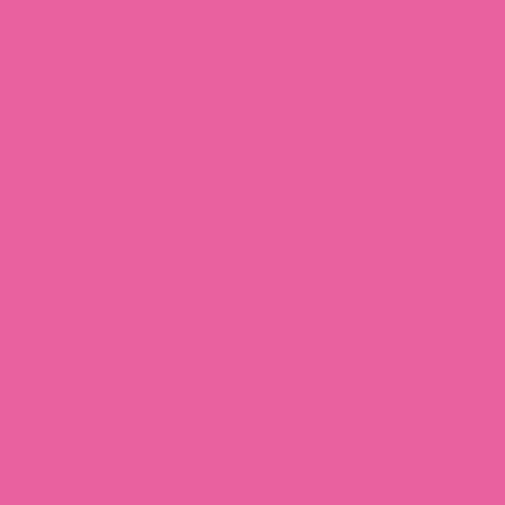 N. カラーシャンプー/トリートメント トリートメント/Pi<ピンク>