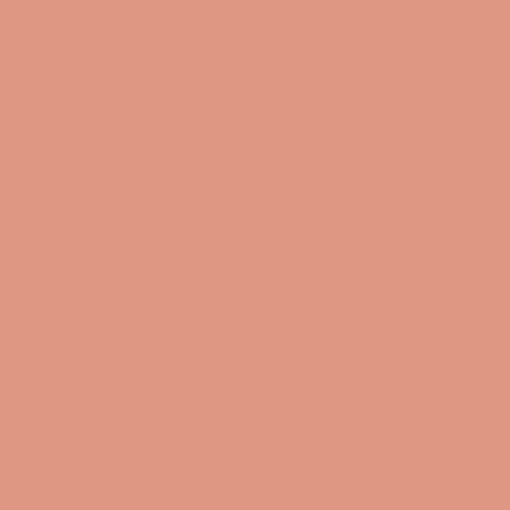 チーク カラー(ブラシ付)442 オレンジ系