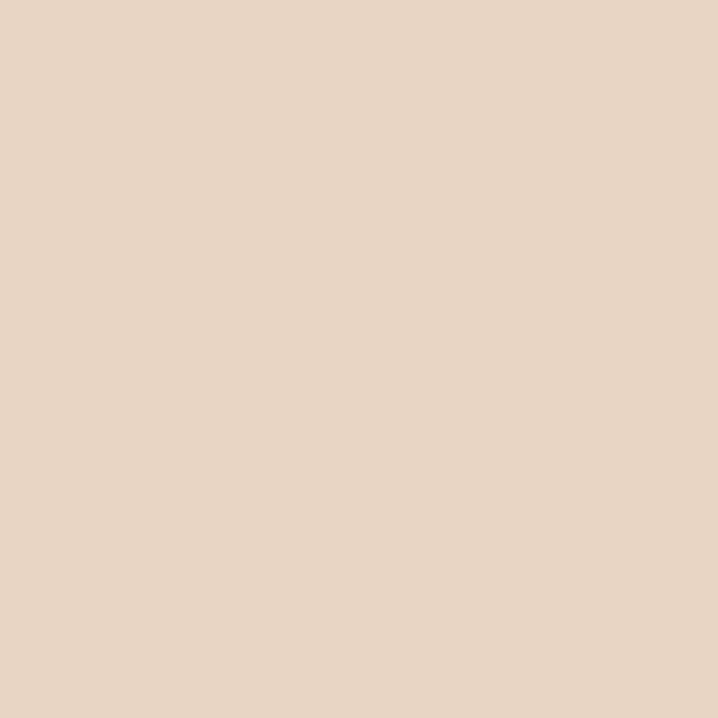 プレイ101スティック ファンデーション#Vanilla