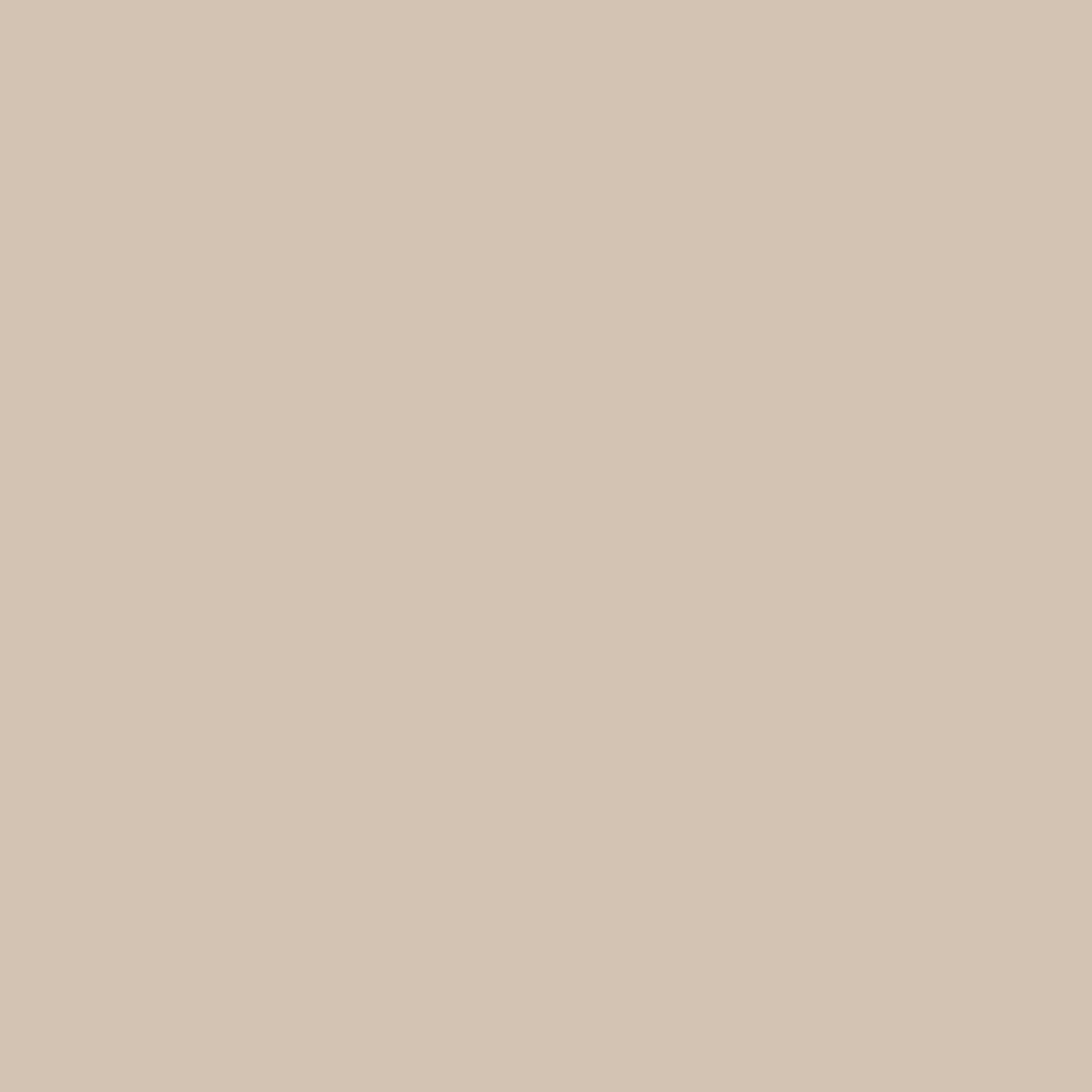 ネイルカラー EX EX-20 マットベージュ