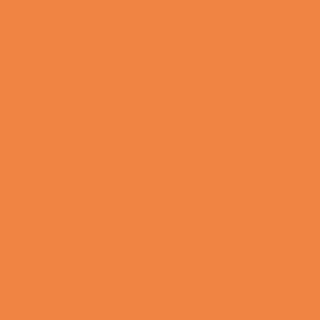 プレスド アイシャドー (レフィル)M オレンジ 250