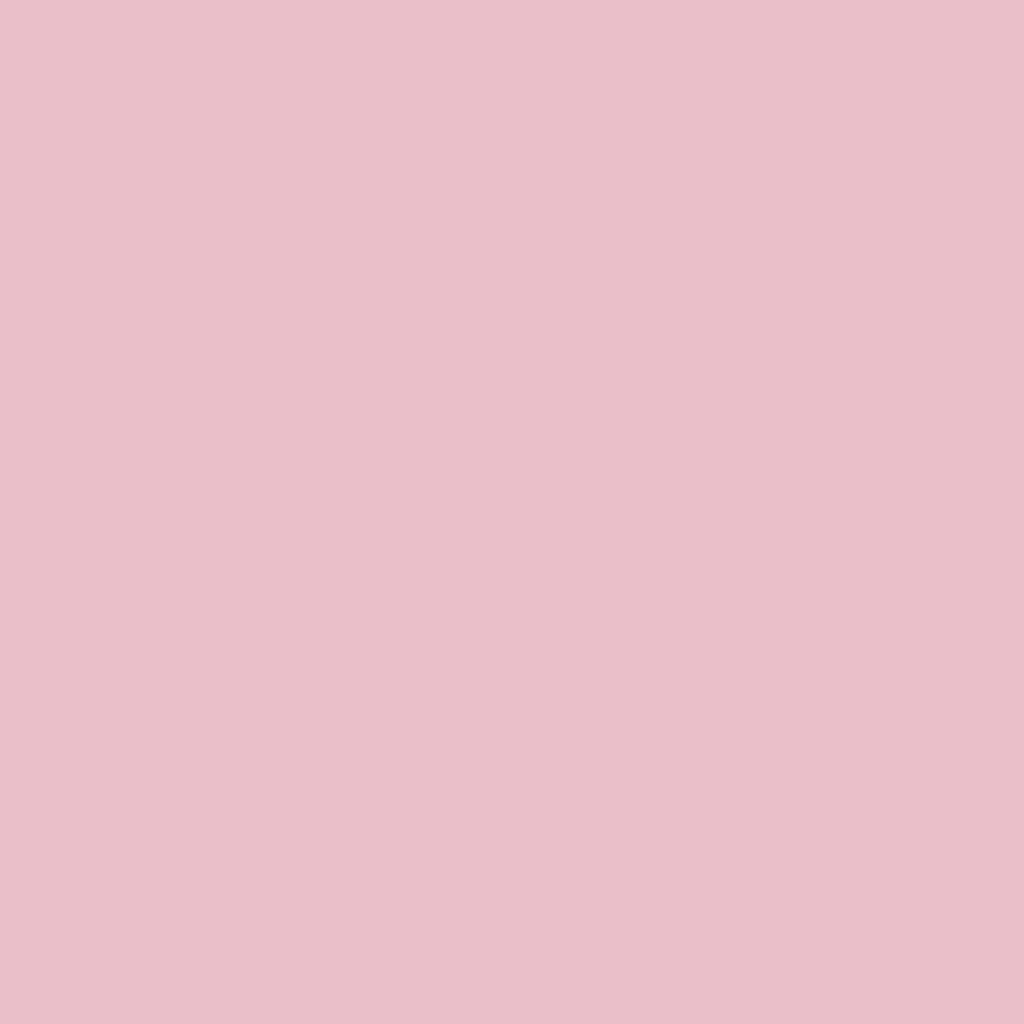 うるふわ仕上げパウダー02 パールピンク