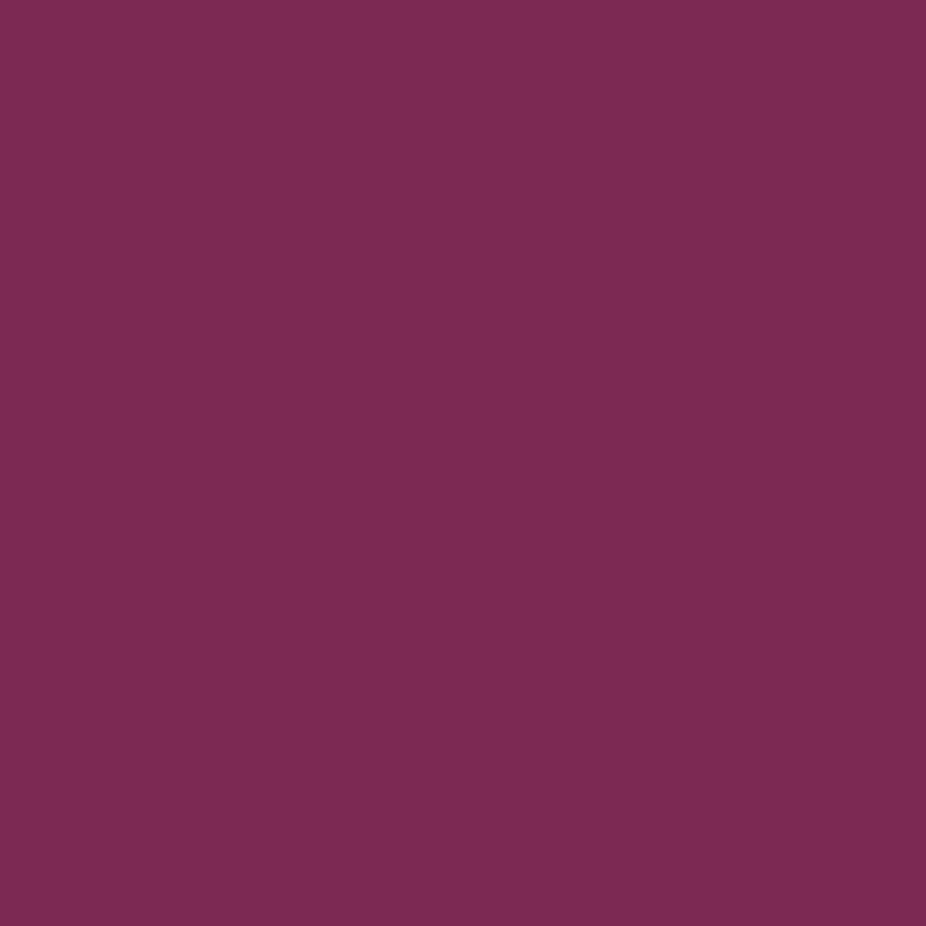 リップ カラー17 バイオレット ファタール