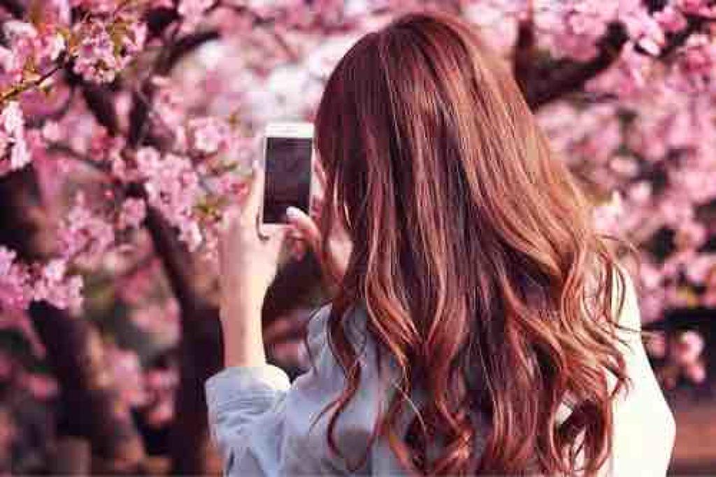 twinkle_beauty_eh2