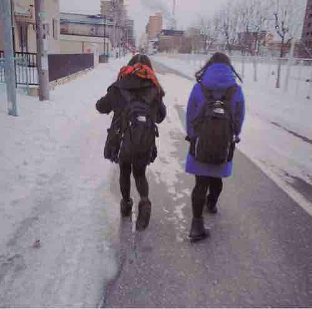 da_ice_mirai