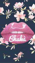 chaka66