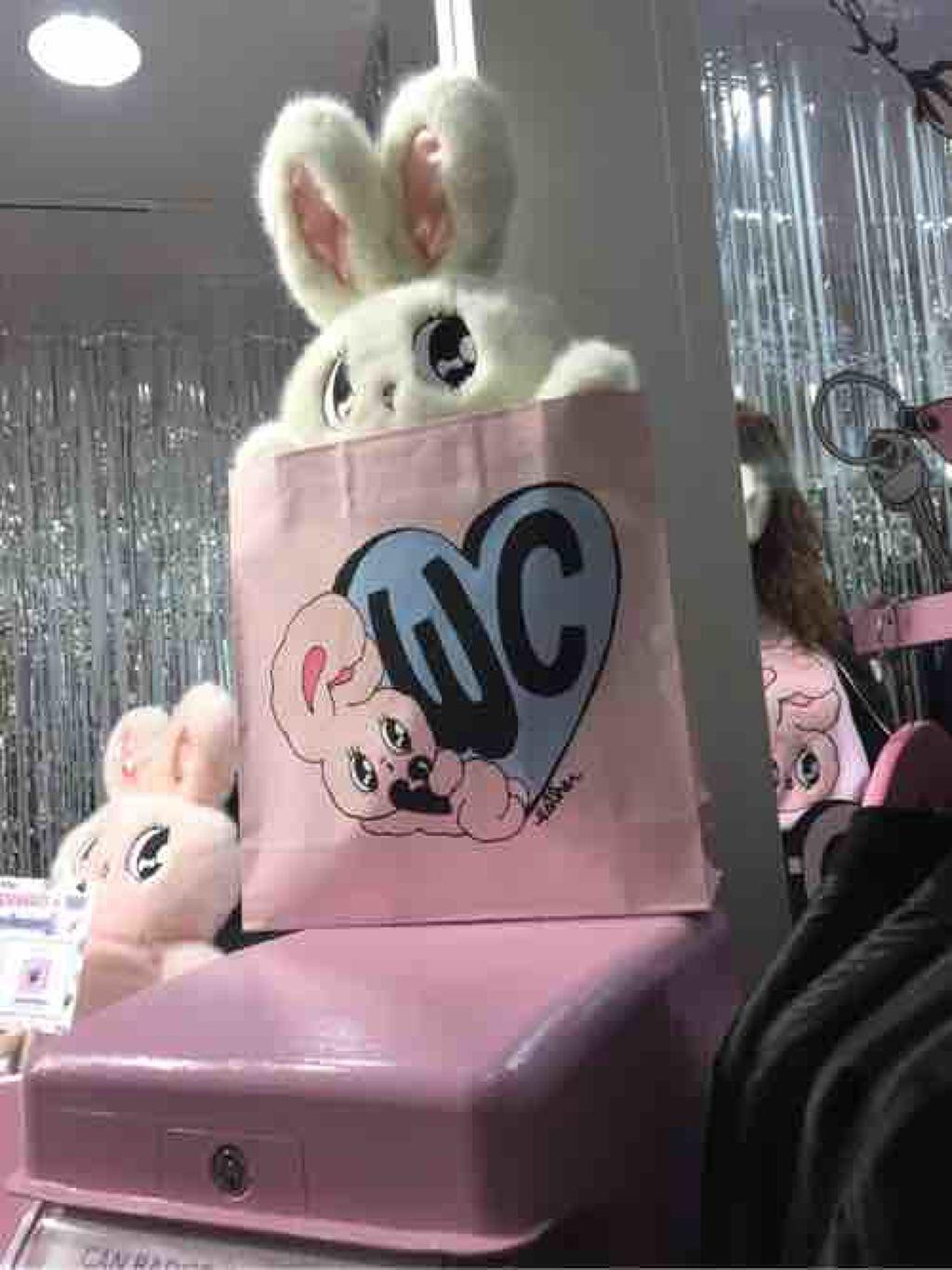 fuwafuwa_rabbit