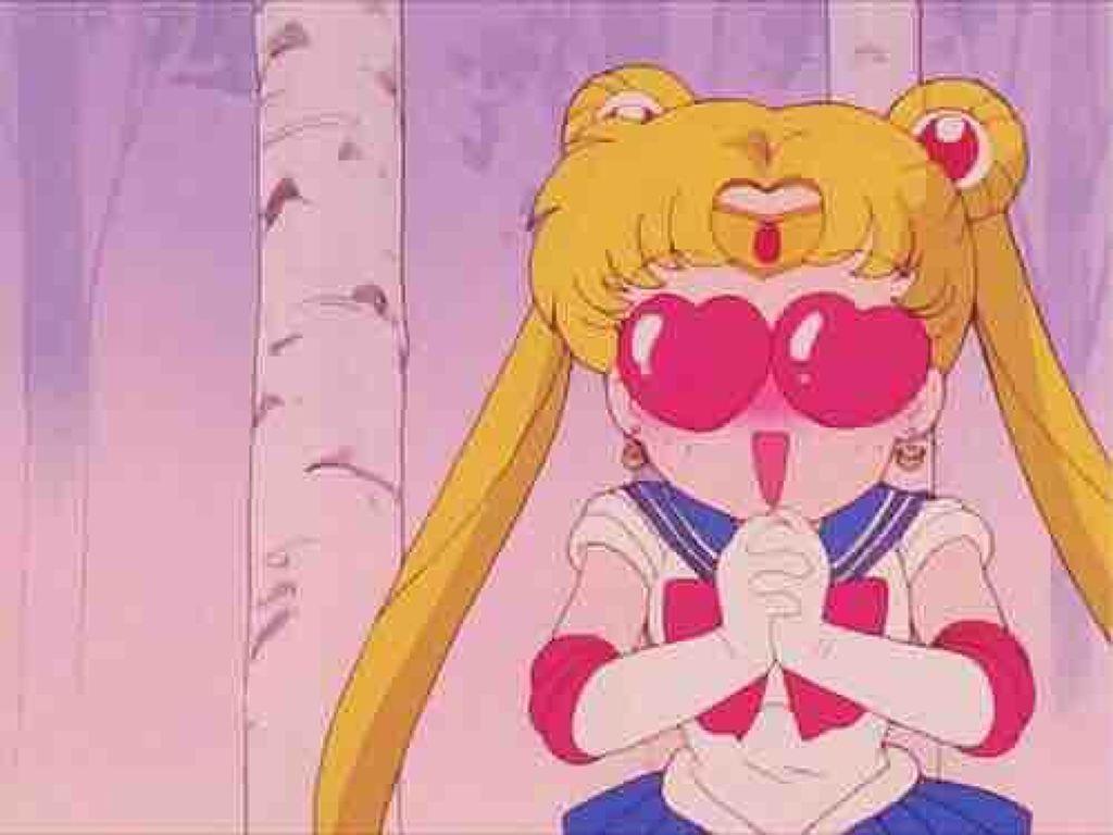 pink_rose_so2