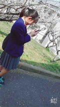yukiho_daruma