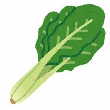 レトロな小松菜