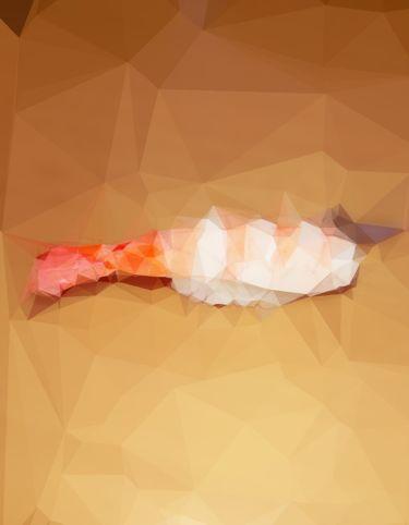 お寿司は〆鯖