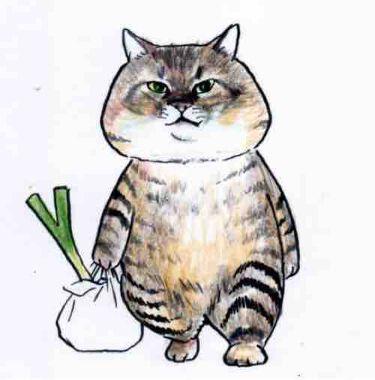 飼い猫🐱🐱