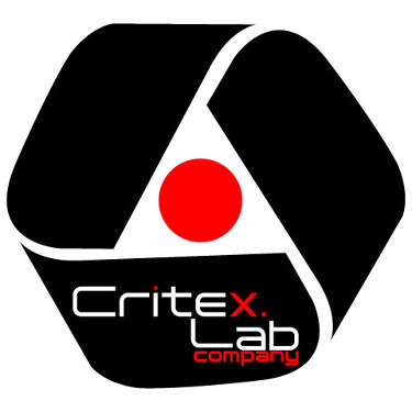 CritexLab研究者(VISIS)