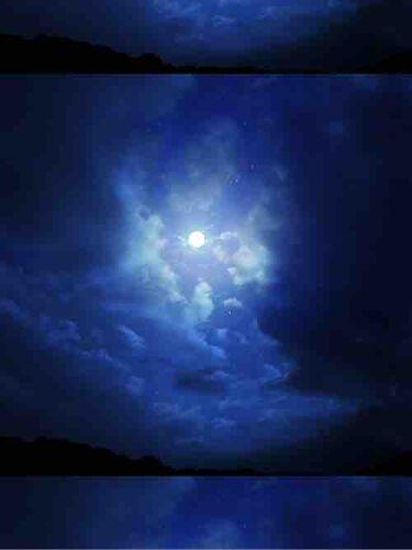 夜月那🌙.*·̩͙   たまに投稿アルヨ!