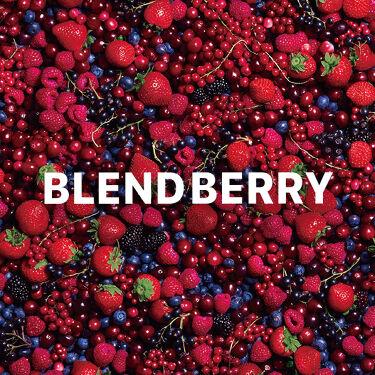 【公式】BLEND BERRY